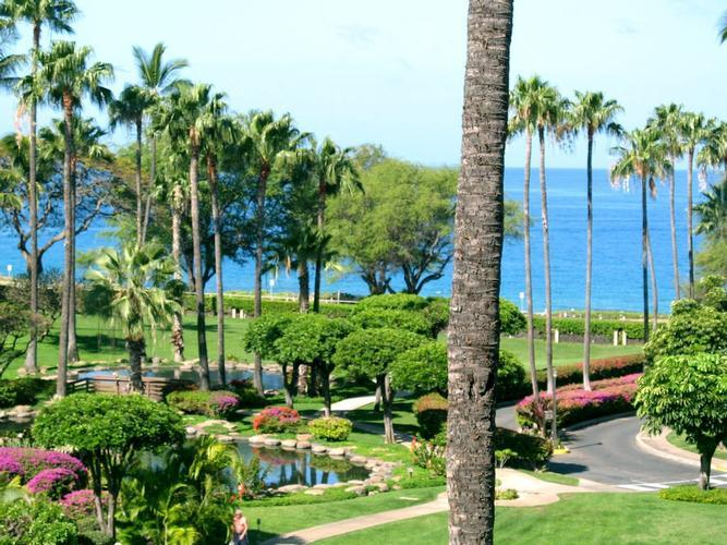 Maui Condo Rental Kamaole Sands Resort